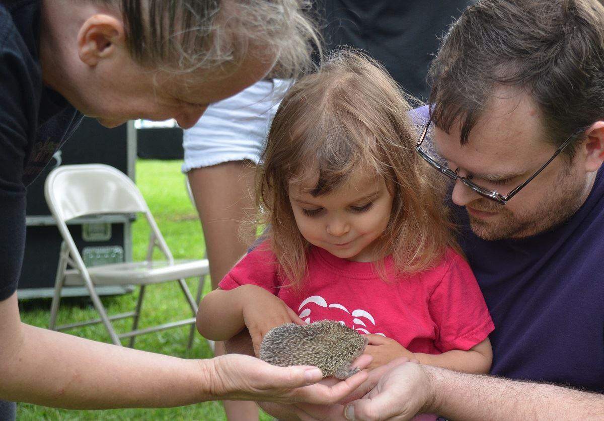 Fun Zone, Critters and Conservation, lesser tenrec and little girl