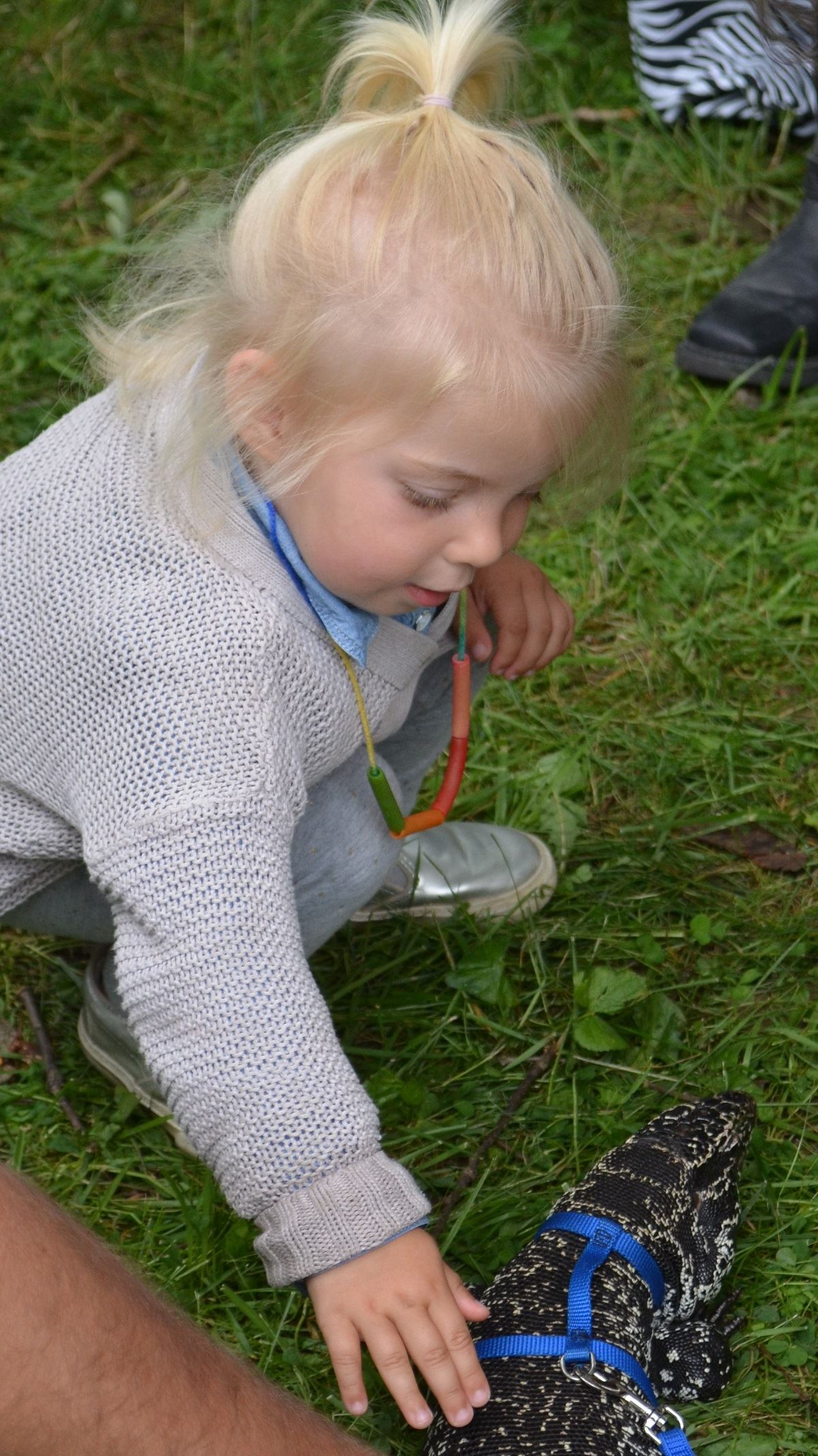 Fun Zone, Critters and Conservation, lizard with girl